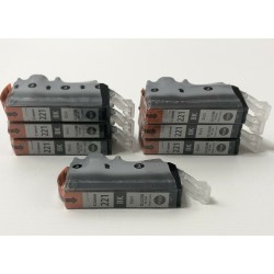 Canon Ink Cartridges PGI...